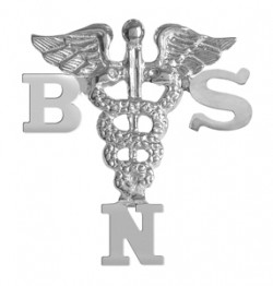 BSN Nursing Degree