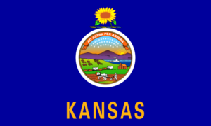 Physical Therapy Programs In Kansas